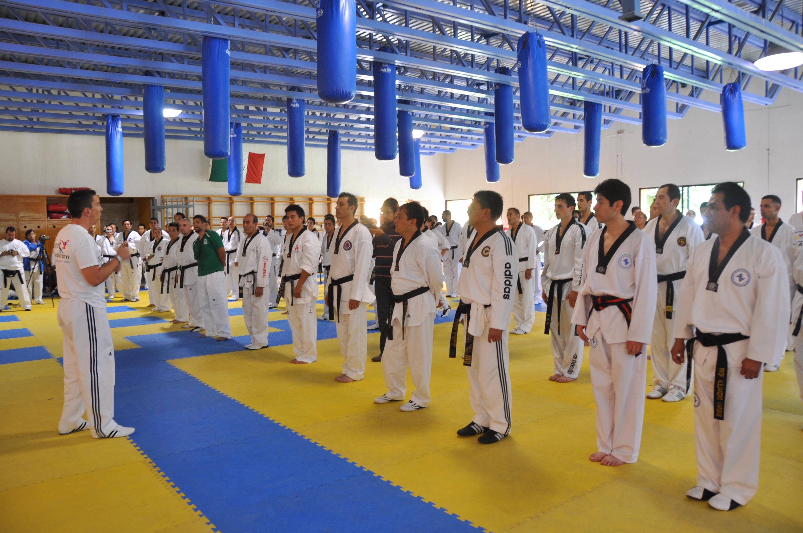 Miami Taekwondo Schools